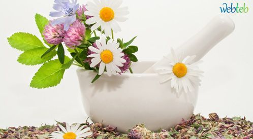كل شيء عن طب الأعشاب! tbl_articles_article