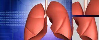 شاهدوا بالفيديو: القلب والدورة الدموية، كيف يعملان؟