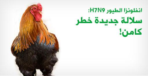 ازدياد القلق بشأن السلالة الجديدة من فيروس إنفلونزا الطيور H7N9