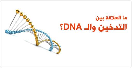 ما العلاقة بين تدخين السجائر والـ DNA؟