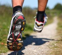 الرياضة وصحة القلب