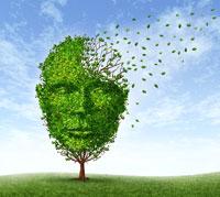 8 معتقدات خاطئة حول أعراض مرض الزهايمر