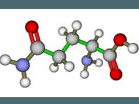 الاحماض الأمينية