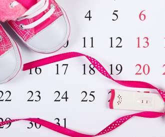 صورة المجموعة - تخطيط الحمل