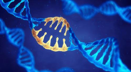 اختبر معلوماتك: عن الأمراض الوراثية