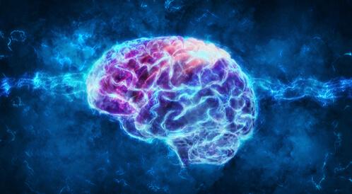 اختبر معلوماتك عن صحة الدماغ