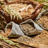 دقيق القمح، الخبز، الحبوب الكاملة