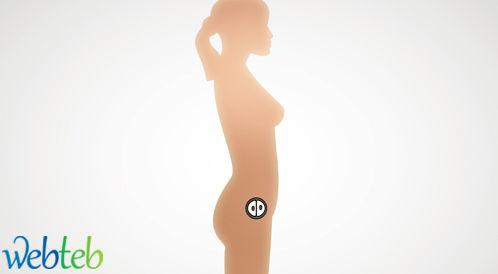 الحمل في الشهر الأول
