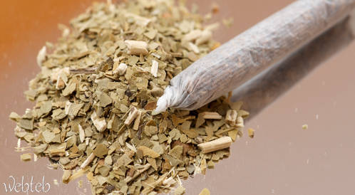 تدخين الماريجوانا قد يقلل من خصوبة الرجال!