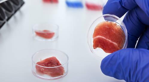 العلاج بالخلايا الجذعية مع خلايا T التي خضعت لتعديل لتكوين مستقبل محدد لمستضد CD19