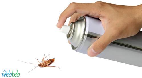 مبيدات الحشرات المنزلية قد تصيب الأطفال بسرطان الدم