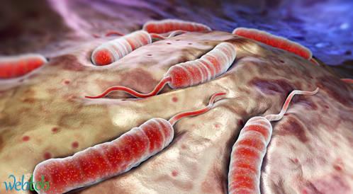 انتشار الكوليرا بالعراق وتعاون دولي للحد منه
