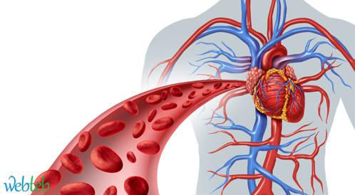 السكري نمط 2 يزيد خطر تكرار النوبات القلبية الوعائية