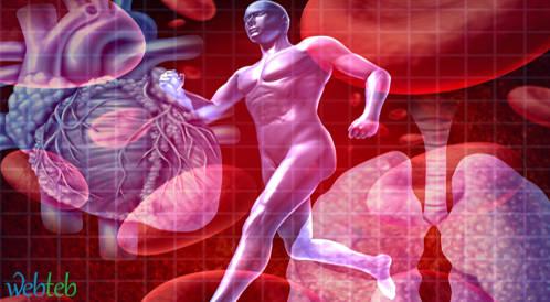 تخفف قدرة القلب والرئة على التحمل من خطر الاصابة بضغط الدم بوجود التهاب نشط