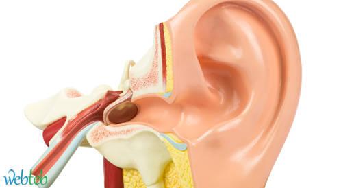 باحثون يكشفون عن بروتين يلعب دورا مركزيا في فقدان السمع