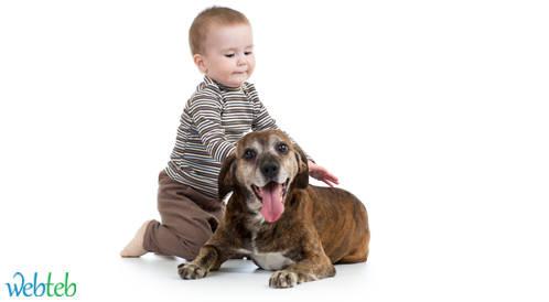 تربية الكلاب في المنزل يقلل من خطر إصابة الأطفال بالربو