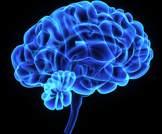 توقع تزايد نسبة مرضى الزهايمر، ولا تزال ميزانيات البحث قليلة