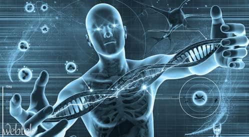 حمية الجينات تبشر بحلول مستقبلية فعالة للسمنة