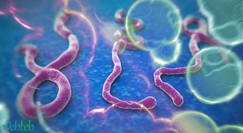 منظمة الصحة العالمية تعلن عن نهاية تفشي وباء ايبولا في غرب أفريقيا
