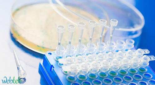 اكتشاف جين جديد يرفع خطر الإصابة بسرطان المبيض