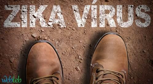 الصحة العالمية تحذر من انتشار فيروس زيكا في أنحاء الأمريكيتين