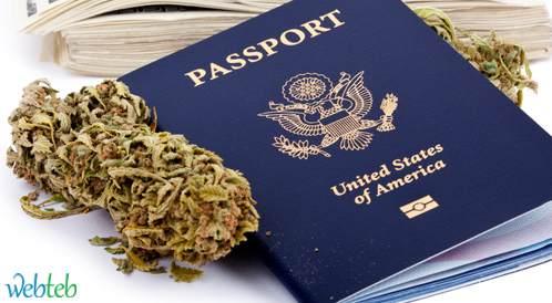 سياحة الماريجوانا في كولورادو وراتفاع عدد الزيارت في غرف الطوارئ