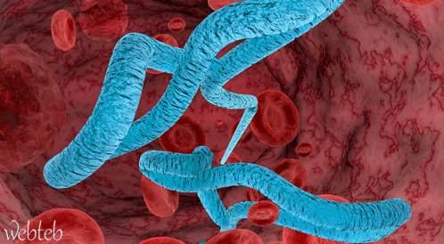 الصحة العالمية: فيروس إيبولا لم يعد يشكل خطراً صحياً عالمياً