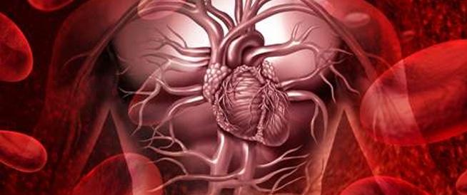التحضير لإطلاق مؤتمر التميز في العناية القلبية بدبي