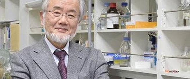 ياباني في 71 من عمره يربح جائزة نوبل للطب لعام 2016