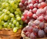 تناول العنب قد يحمي من الزهايمر