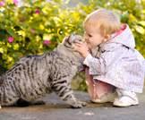 القطط والكلاب قد تقلل من خطر إصابة طفلك بالسمنة