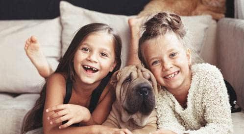 الحيوانات الأليفة قد تقي الأطفال من الحساسية والسمنة