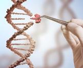 جينات جديدة