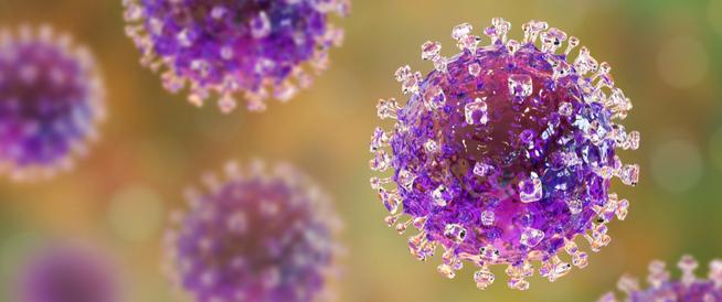 لماذا لا يجب علينا القلق من فيروس نيباه؟
