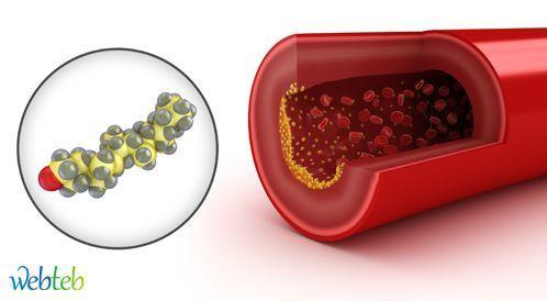 الكوليسترول المرتفع قد يؤخر الحمل!