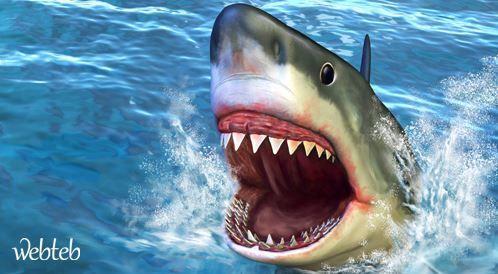 """""""رامز قرش البحر"""": ما هو الخوف وما هي حدوده؟"""