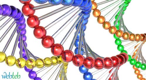تحديد موقع الجينات المرتبطة بالإصابة بالسكري 1