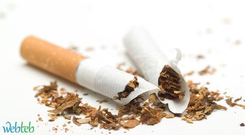 [السعودية] الصحة تحتفل في اليوم العالمي للامتناع عن تعاطي التبغ