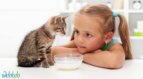 دراسة: القطط قد تسبب الإصابة بالانفصام!