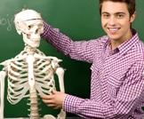 الخرافات والحقائق حول عظامك