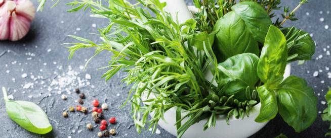 هل تُساعد هذه الأعشاب في التقليل من الحكة الجلدية؟