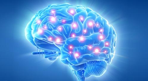 خرافات وحقائق حول دماغك: لا تصدق كل ما تسمعه!