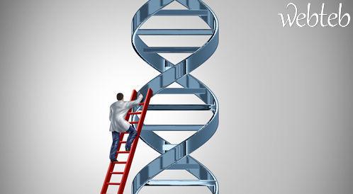 شاهدوا بالصور: كيف تتوارث الامراض الوراثية