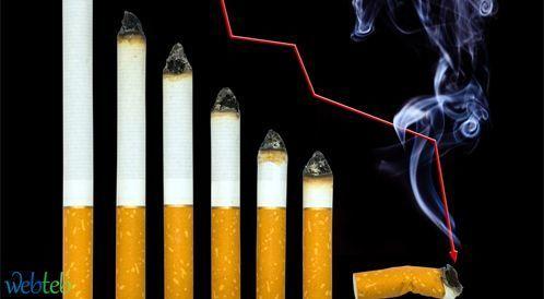 مضار التدخين على اعضاء الجسم المختلفة