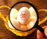 اضرار البيض ومخاطره
