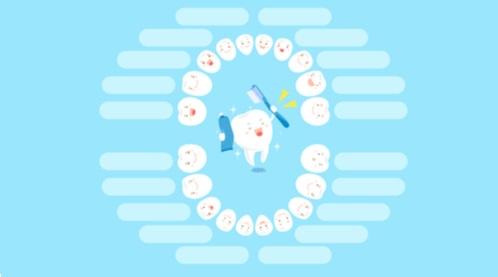 ترتيب ظهور الأسنان عند الأطفال بالصور
