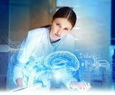 كيف يعمل الدماغ البشري؟