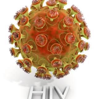 1981 - 1982 - ظهور مرض الإيدز وتسميته
