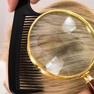 كيفية الكشف عن قمل الرأس