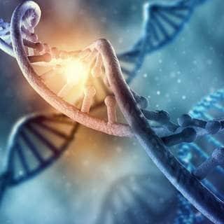 احمي الحمض النووي الخاص بك